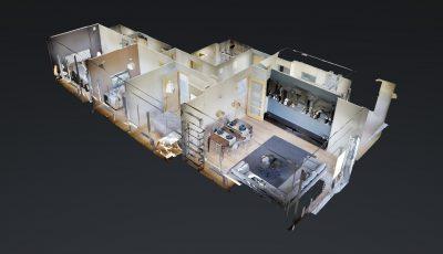 SARDUNYA EVLERİ 3D Model